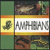 Amphibians | Graham Meadows |