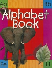 Big Alphabet Book - Revised