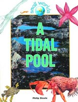 A Tidal Pool | Philip Steele |