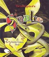 The Life Cycle of a Snake