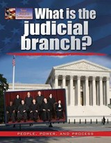 What Is the Judicial Branch? | Ellen Rodger |