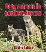 Baby Animals in Northern Forests | Bobbie Kalman |