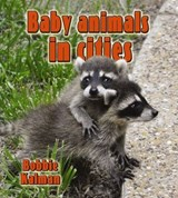 Baby Animals in Cities | Bobbie Kalman |