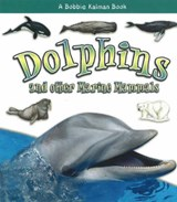 Dolphins and Other Marine Mammals | Kelley Macaulay |