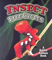 Insect Life Cycles | Molly Aloian |