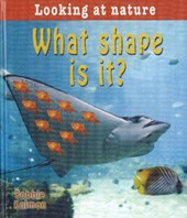 What Shape Is It? | Bobbie Kalman |