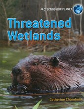 Threatened Wetlands | Catherine Chambers |