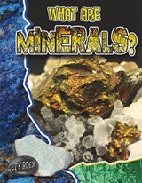 What Are Minerals? | Natalie Hyde |