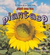 Que Son Las Plantas? / What is a Plant?