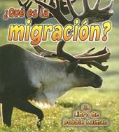 Que Es La Migracion?