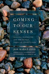 Coming to Our Senses | Jon Kabat-Zinn |