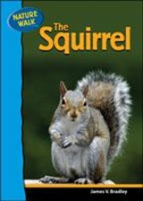 The Squirrel | James V. Bradley |