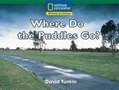 Where Do the Puddles Go?