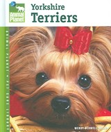 Yorkshire Terriers | Wendy Bedwell-wilson |