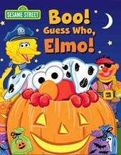 Sesame Street Boo! Guess Who, Elmo!