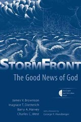 Stormfront | James V. Brownson |