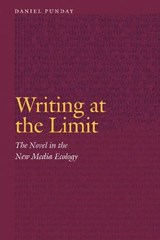 Writing at the Limit | Daniel Punday |