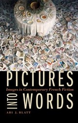 Pictures Into Words | Ari J. Blatt |