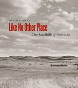 Like No Other Place | David A. Owen |