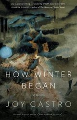 How Winter Began | Joy Castro |