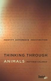 Thinking Through Animals