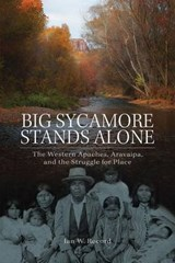 Big Sycamore Stands Alone | Ian W. Record |