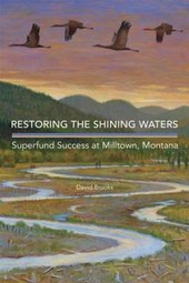 Restoring the Shining Waters