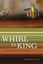 Whirl Is King | Brendan Galvin |