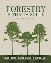 Forestry in the U.S. South