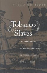 Tobacco and Slaves | Allan Kulikoff |