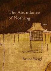 The Abundance of Nothing