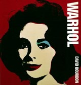 Warhol | David Bourdon |