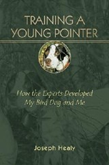 Training A Young Pointer | Joe Healy |