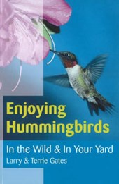 Enjoying Hummingbirds