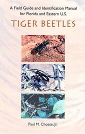 A Field Guide and Identification Manual for Florida and Eastern U.s. Tiger Beetles