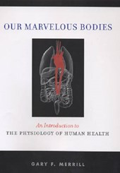 Our Marvelous Bodies
