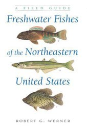 Freshwater Fishes of the Northeastern United States