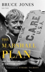 The Marshall Plan and the Shaping of American Strategy |  |