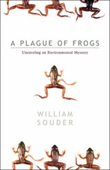Plague of Frogs | William Souder |