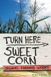 Turn Here Sweet Corn