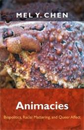Animacies