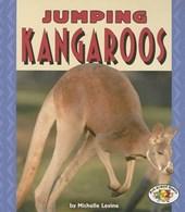 Jumping Kangaroos