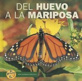 Del Huevo a La Mariposa/from Egg to Butterfly | Shannon Zemlicka |
