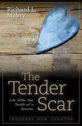 The Tender Scar | Richard L. Mabry |