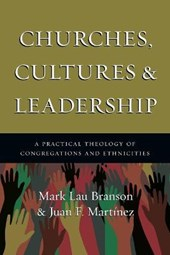 Churches, Cultures & Leadership