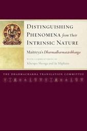 Distinguishing Phenomena from Their Intrinsic Nature