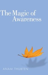 Magic of Awareness