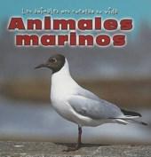 Animales Marinos/Sea Animals