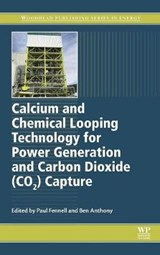Calcium and Chemical Looping Technology for Power Generation and Carbon Dioxide Co2 Capture | Paul Fennell |