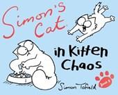 Simon's cat (03): in kitten chaos